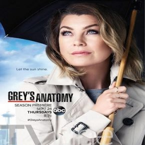 greys-anatomy-thirteenth-season